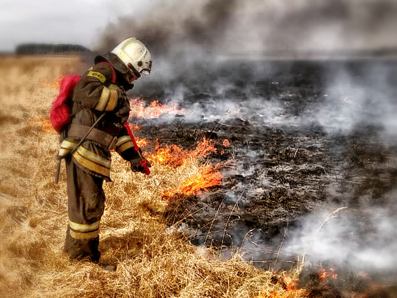 Работники ГКУ «Мособлпожспас» ликвидировали пал сухой травы в Шатурском городском округе